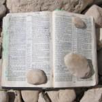 Biblia-otvorena